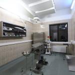 Кабинет клиники Maxima Vet
